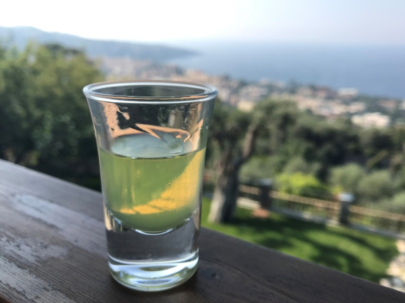 limon IMG_5622